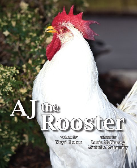 AJ the Rooster book cover. It has a rooster on the cover.